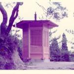 TAJIMIOTOWA025